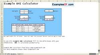 BMI Calculator Example