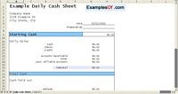 Daily Cash Sheet Example