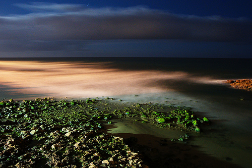 night seascape long exposure example