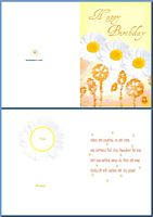Birthday Card For Her:Daisies Example