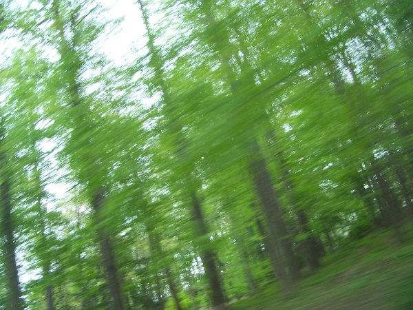 Examples Of Motion Blur